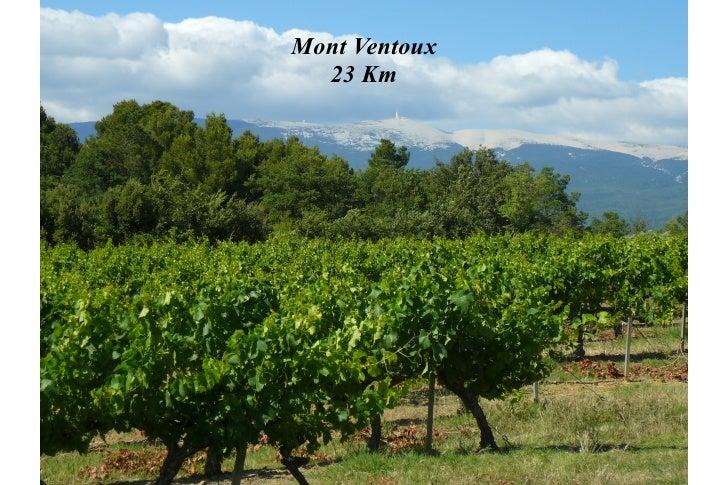 Mont Ventoux  23 Km