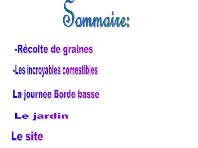 Diaporama présenté par le Club Jardin à Saint Juéry Slide 2