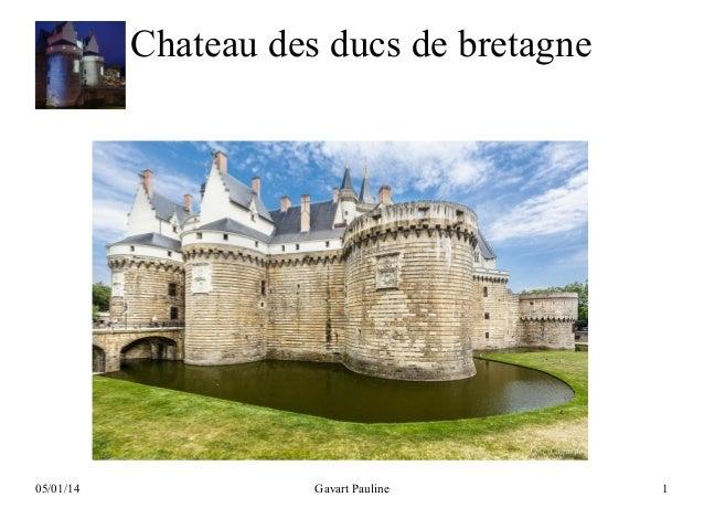 Chateau des ducs de bretagne  05/01/14  Gavart Pauline  1
