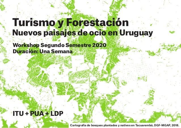 Turismo y Forestación Nuevos paisajes de ocio en Uruguay Workshop Segundo Semestre 2020 Duración: Una Semana ITU + PUA + L...