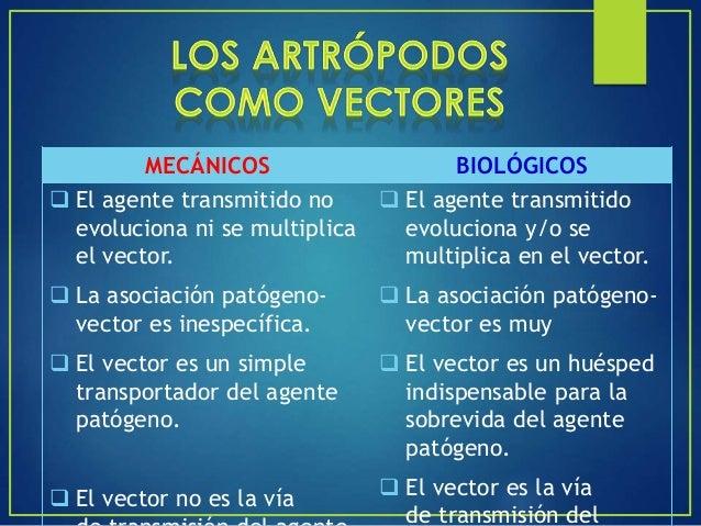 Es la idoneidad de los vectores para una transmisión efectiva, determinada por múltiples factores propios del vector, del ...