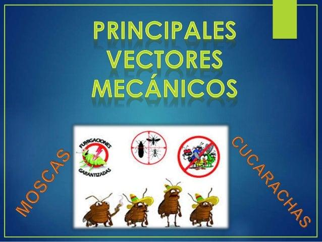 SE HA COMPROBADO TRANSMISION MECANICA DE : MEDIDAS DE CONTROL
