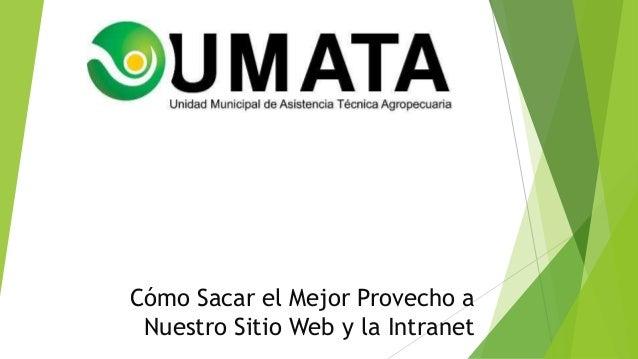 Cómo Sacar el Mejor Provecho a Nuestro Sitio Web y la Intranet