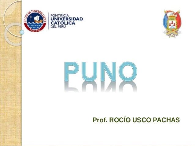 Prof. ROCÍO USCO PACHAS