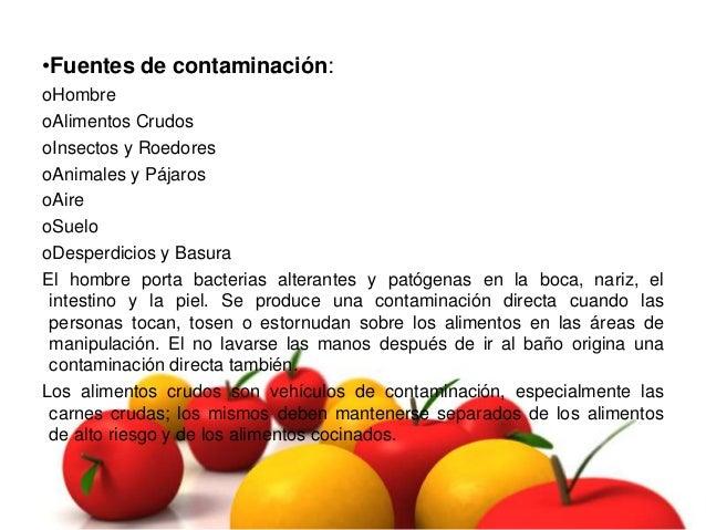 Diapositiva contaminacion cruzada - Fuentes de contaminacion de los alimentos ...