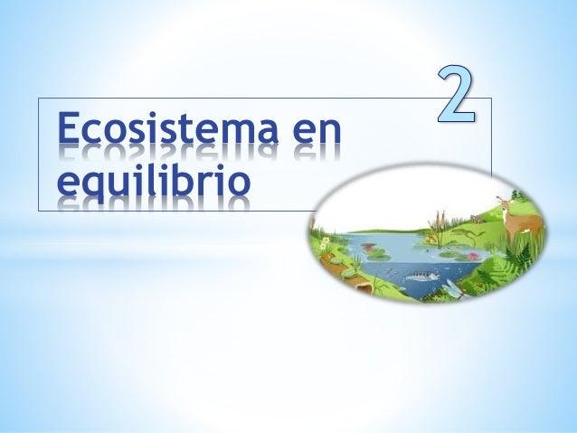 Ecosistema en equilibrio