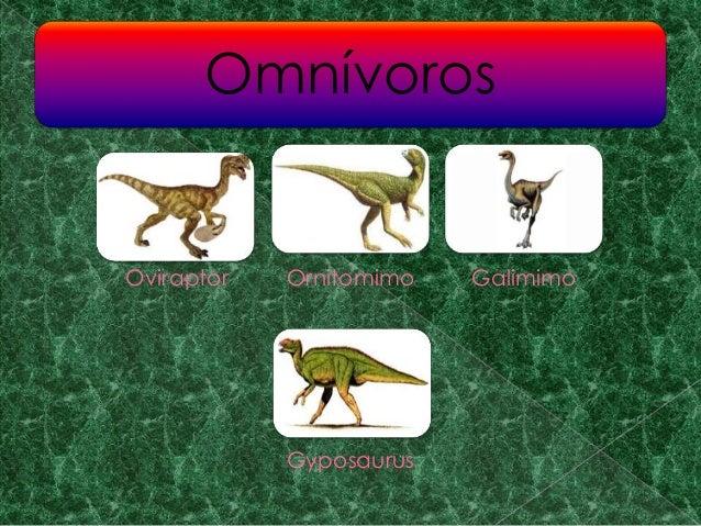 Diapositiva Dinosaurios Su nombre viene del latín y significa ladrón de huevos, es un dinosaurio el oviraptor era un dinosaurio muy similar a las aves, sólo que media alrededor de 2 metros de largo y. diapositiva dinosaurios