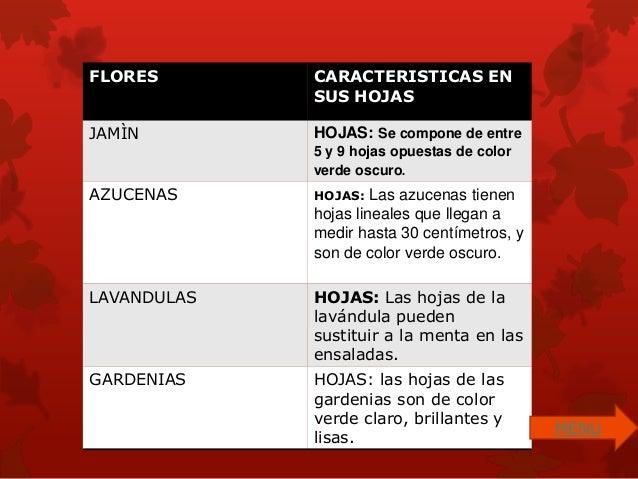 Diapositiva las flores