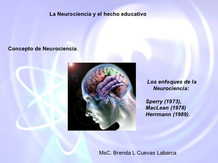 La Neurociencia y el hecho educativoConcepto de Neurociencia.                                                     Los enfo...