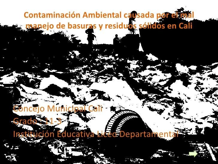 Contaminación Ambiental causada por el mal   manejo de basuras y residuos sólidos en Cali     Concejo Municipal Cali Grado...