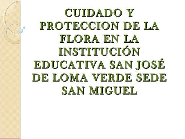 CUIDADO Y PROTECCION DE LA    FLORA EN LA    INSTITUCIÓNEDUCATIVA SAN JOSÉDE LOMA VERDE SEDE     SAN MIGUEL