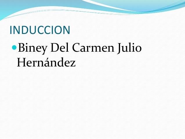 INDUCCION Biney Del Carmen Julio Hernández