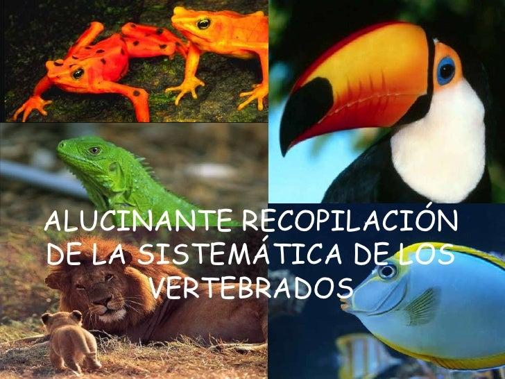 ALUCINANTE RECOPILACIÓN DE LA SISTEMÁTICA DE LOS VERTEBRADOS <br />