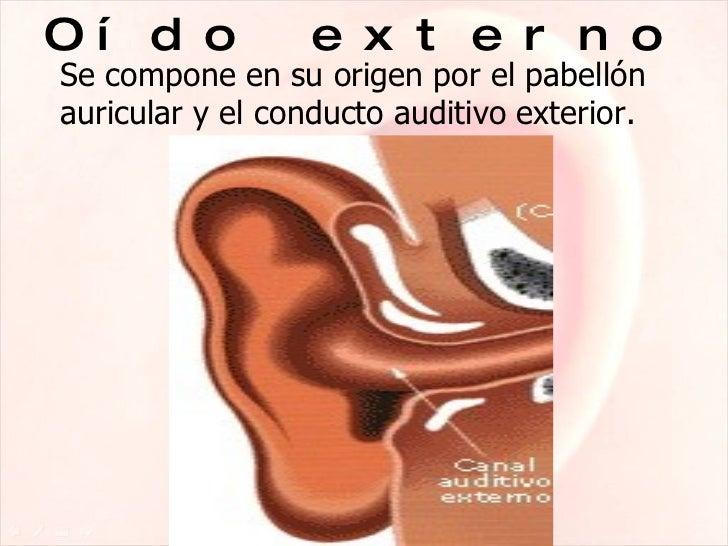 Diapositivas El Oido Y La AudiciN