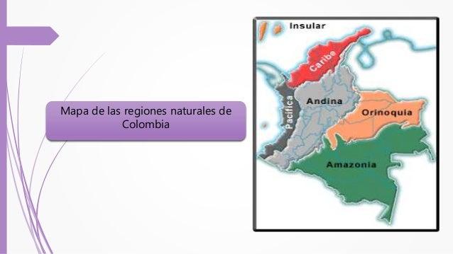 Región Caribe Zona costera formada por una llanura ondulada de poca altura Predomina el clima tropical La principal elevac...