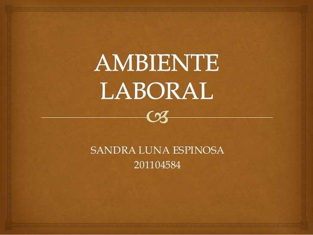 SANDRA LUNA ESPINOSA 201104584