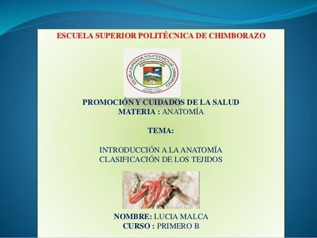 Diapositivas anatomia y fisiologia 1