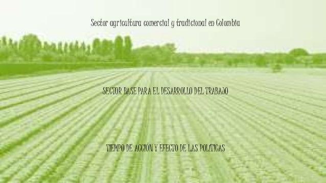 Sector agricultura comercial y tradicional en Colombia SECTOR BASE PARA EL DESARROLLO DEL TRABAJO TIEMPO DE ACCIÓN Y EFECT...