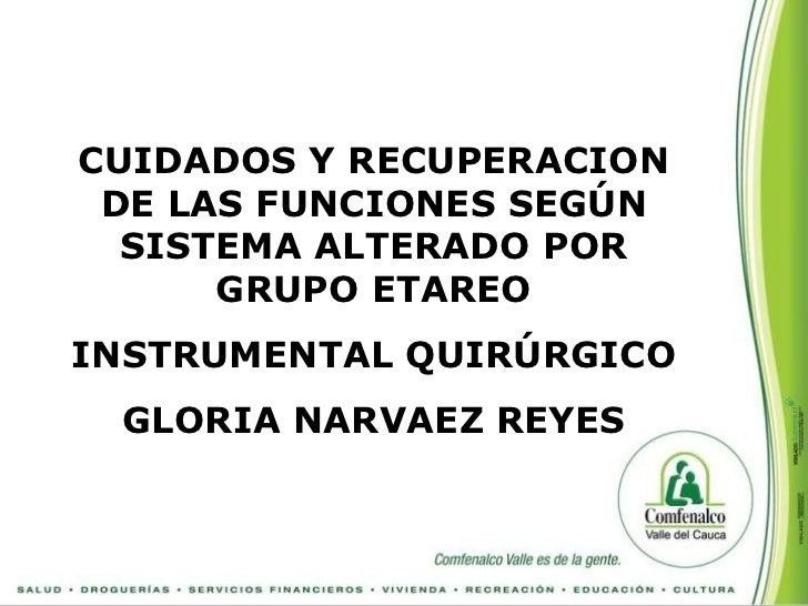 CUIDADOS Y RECUPERACION DE LAS FUNCIONES SEGÚN  SISTEMA ALTERADO POR      GRUPO ETAREOINSTRUMENTAL QUIRÚRGICO GLORIA NARVA...