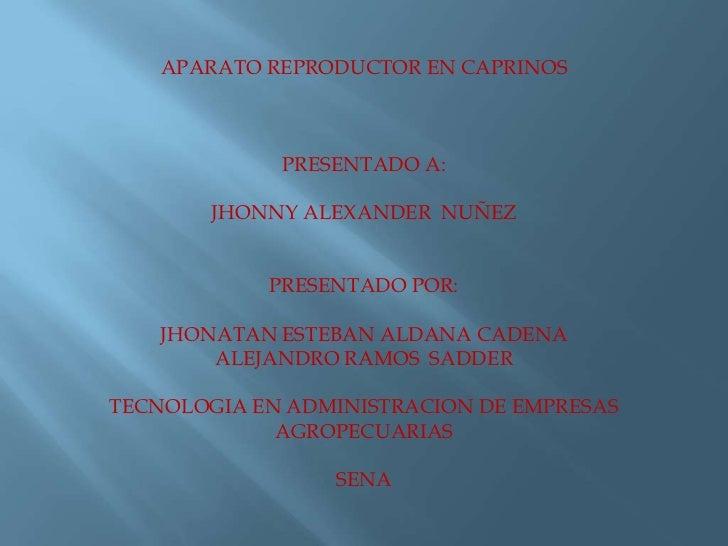 APARATO REPRODUCTOR EN CAPRINOS <br />PRESENTADO A:<br />JHONNY ALEXANDER  NUÑEZ<br />PRESENTADO POR:<br />JHONATAN ESTEBA...
