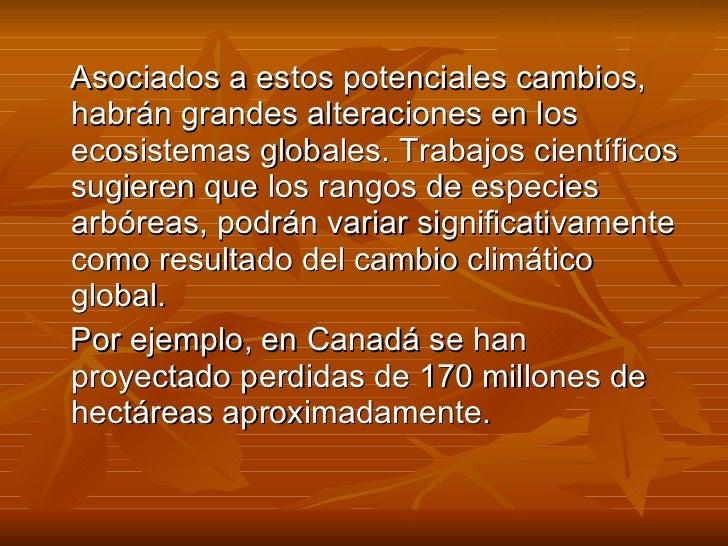Diapositivas Calentamiento global Slide 4