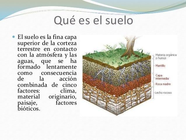 Diapositivas contaminacion suelo exposicion for Clausula suelo que ed