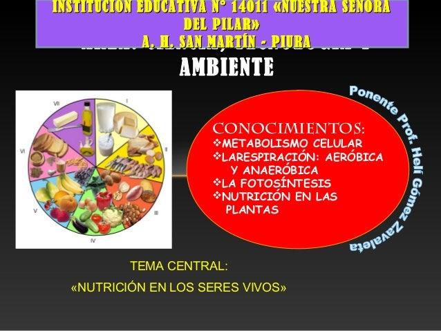 TEMA CENTRAL:«NUTRICIÓN EN LOS SERES VIVOS»ÁREA: CIENCIA, TECNOLOGÍA YAMBIENTECONOCIMIENTOS:METABOLISMO CELULARLARESPIRA...