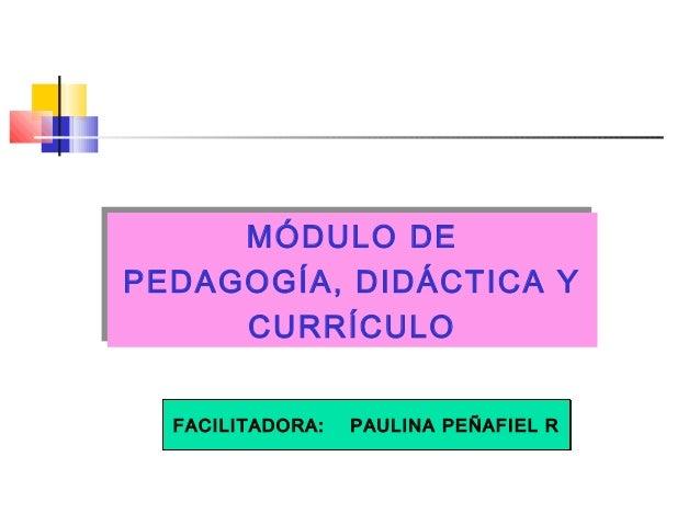 . MÓDULO DE PEDAGOGÍA, DIDÁCTICA Y CURRÍCULO MÓDULO DE PEDAGOGÍA, DIDÁCTICA Y CURRÍCULO FACILITADORA: PAULINA PEÑAFIEL RFA...