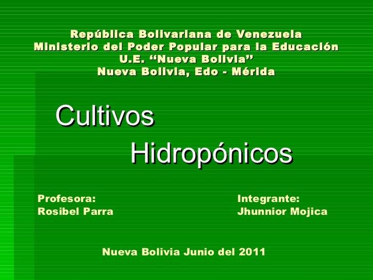 República Bolivariana de Venezuela Ministerio del Poder Popular para la Educación U.E. ''Nueva Bolivia'' Nueva Bolivia, Ed...