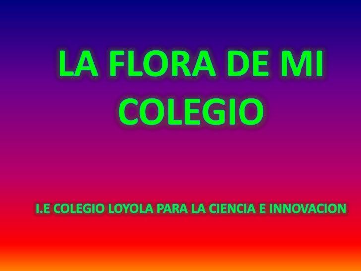 LA FLORA DE MI COLEGIO<br />I.E COLEGIO LOYOLA PARA LA CIENCIA E INNOVACION<br />