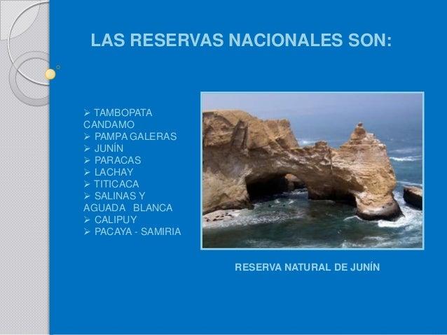 Conservacion de los recursos naturales yahoo dating 2