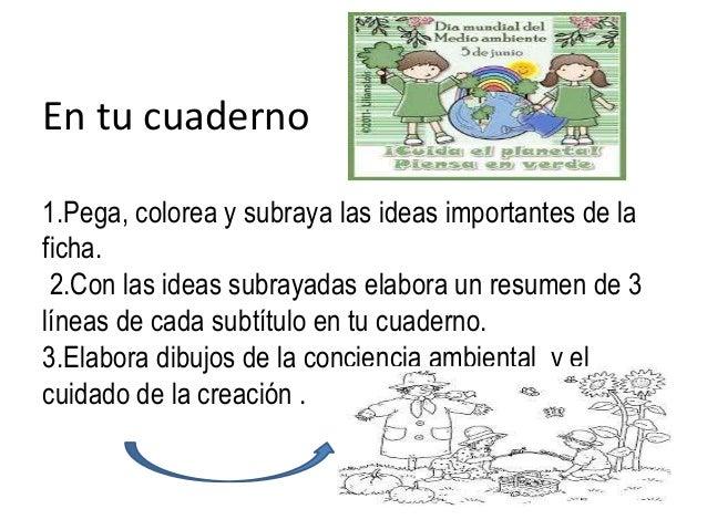Diapositivas De El Hombre Al Cuidado De La Creación