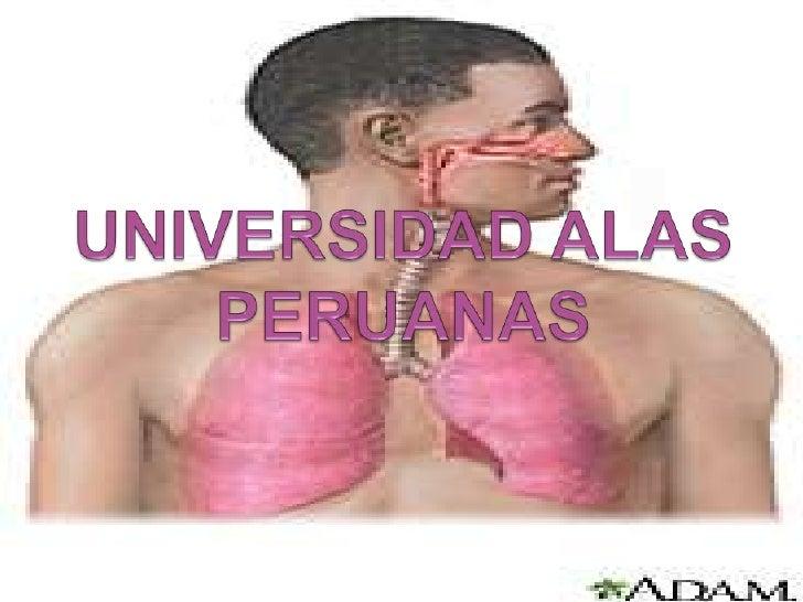 UNIVERSIDAD ALAS PERUANAS<br />