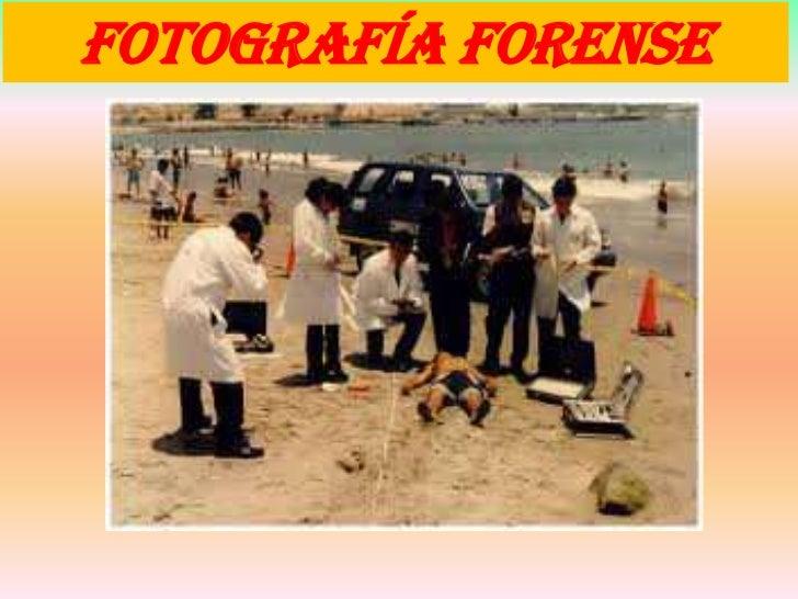 FOTOGRAFÍA FORENSE