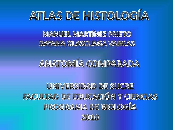 ATLAS DE HISTOLOGÍA<br />MANUEL MARTÍNEZ PRIETO<br />DAYANA OLASCUAGA VARGAS<br />ANATOMÍA COMPARADA<br />UNIVERSIDAD DE S...