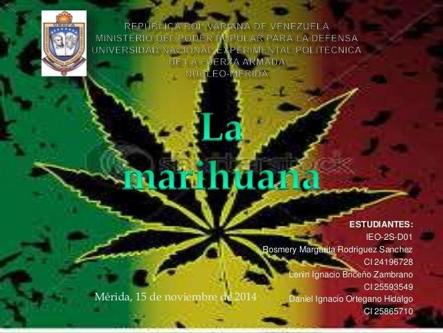 Diapositivas De La Marihuana