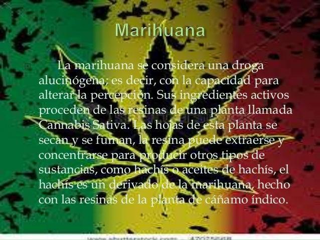 Im Genes De Marihuana Con Frase Para Facebook Imagenes