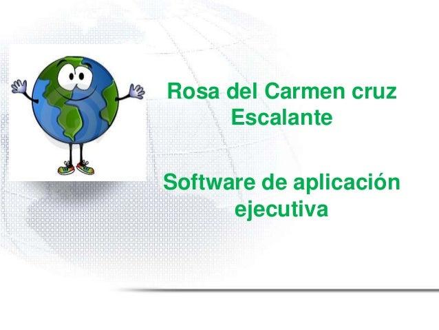 Rosa del Carmen cruzEscalanteSoftware de aplicaciónejecutiva