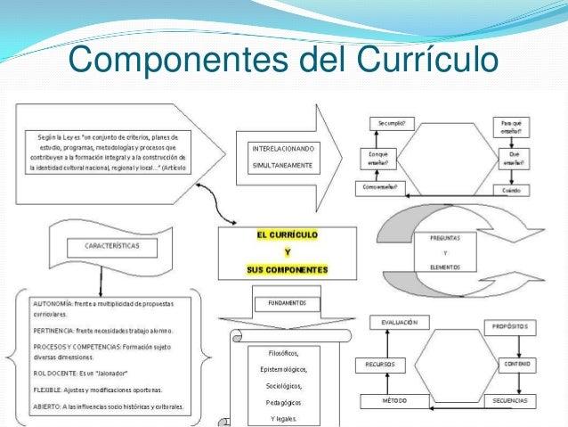 Componentes del Currículo •