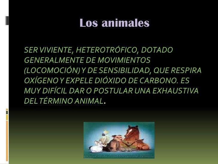Los animales<br />Ser viviente, heterotrófico, dotado generalmente de movimientos (locomoción) y de sensibilidad, que resp...