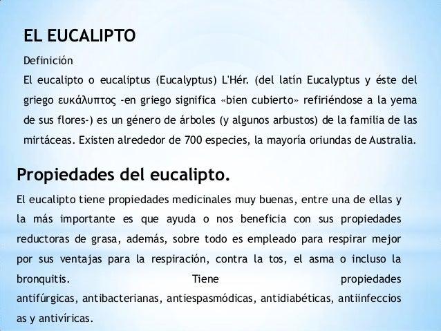 Diapositivas del proyecto de pis - Informacion sobre el eucalipto ...