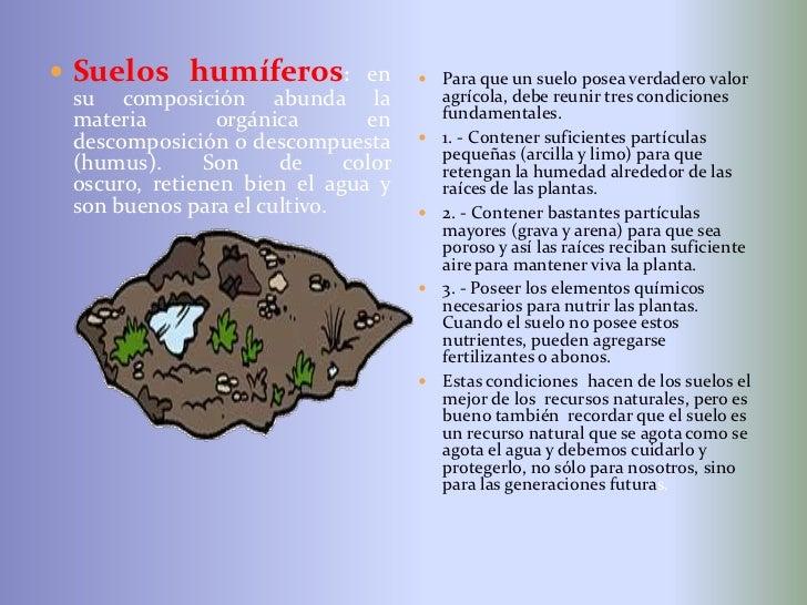 Diapositivas del suelo for Cuales son las caracteristicas del suelo