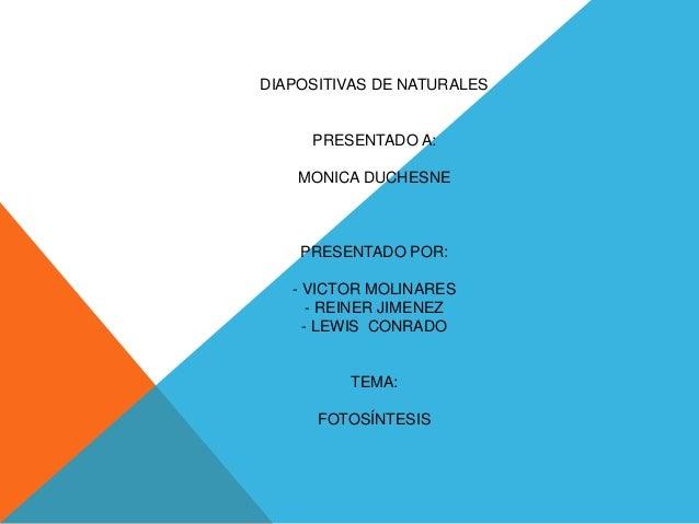 DIAPOSITIVAS DE NATURALES PRESENTADO A: MONICA DUCHESNE PRESENTADO POR: - VICTOR MOLINARES - REINER JIMENEZ - LEWIS CONRAD...