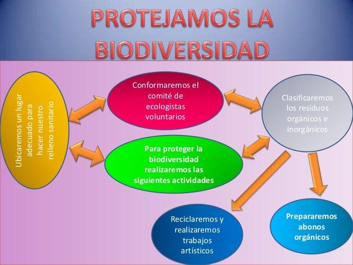 Resultado de imagen para proteccion de la biodiversidad