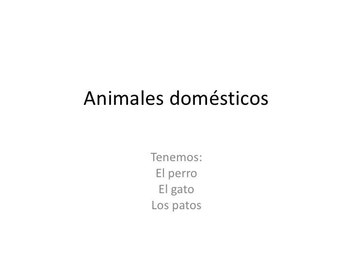 Animales domésticos      Tenemos:       El perro       El gato      Los patos