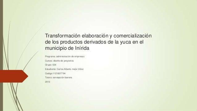 Transformación elaboración y comercialización de los productos derivados de la yuca en el municipio de Inírida Programa: a...