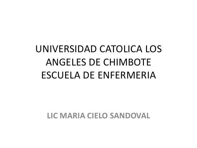 UNIVERSIDAD CATOLICA LOS ANGELES DE CHIMBOTE ESCUELA DE ENFERMERIA LIC MARIA CIELO SANDOVAL