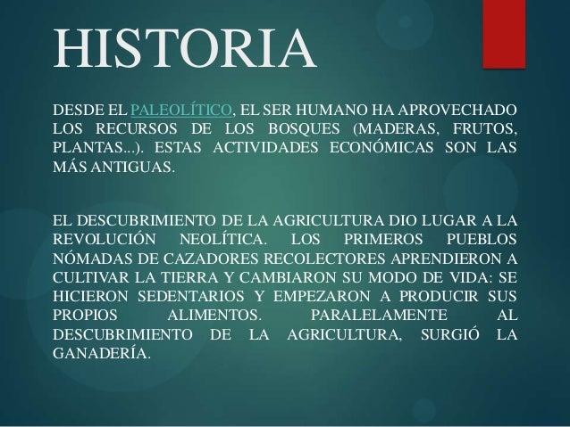 HISTORIA DESDE EL PALEOLÍTICO, EL SER HUMANO HA APROVECHADO LOS RECURSOS DE LOS BOSQUES (MADERAS, FRUTOS, PLANTAS...). EST...