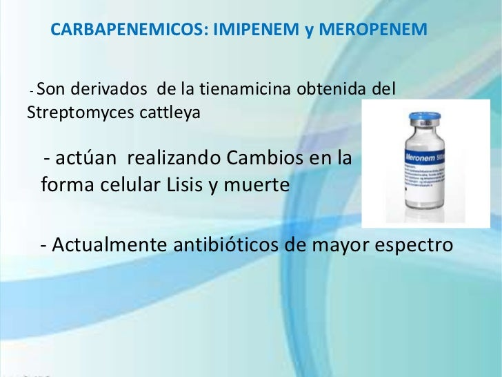 Diapositivas antibióticos