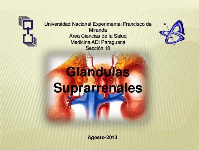 Universidad Nacional Experimental Francisco de Miranda Área Ciencias de la Salud Medicina ADI Paraguaná Sección 10 Agosto-...